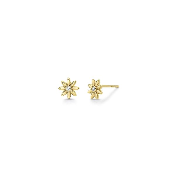 Shy Creation 14k Yellow Gold Earrings 0.03 ct. tw.