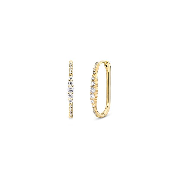 Shy Creation 14k Yellow Gold Earrings 1/4 ct. tw.
