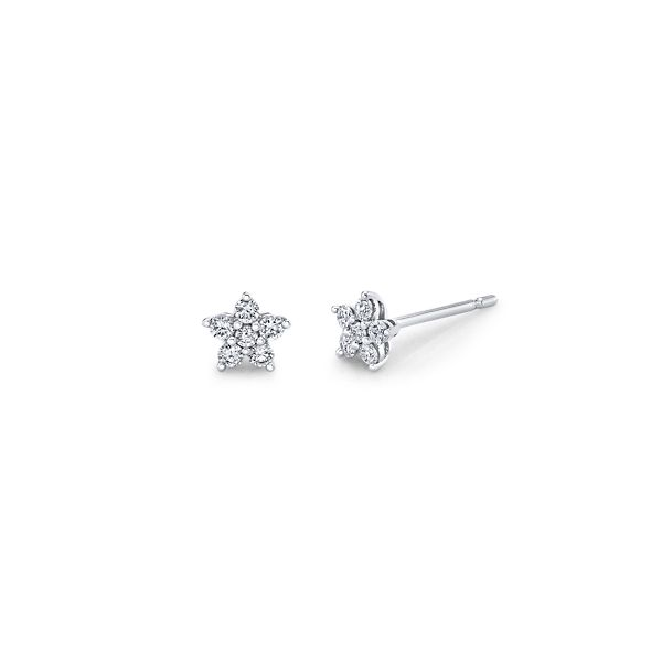 14k White Gold Diamond Earrings 1/5 ct. tw.