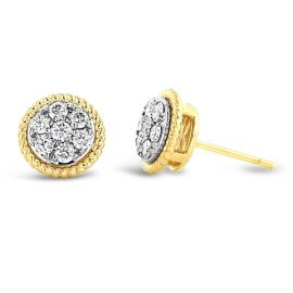 14k Yellow Gold and 14k White Earrings 1/2 ct. tw.