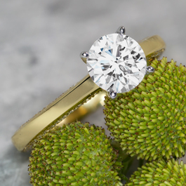 Simon G. 18k Yellow Gold and 18k White Gold Diamond Engagement Ring Setting 1/4 ct. tw.
